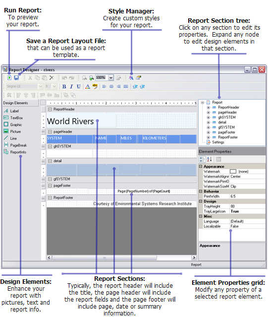 Working with the Report Designer