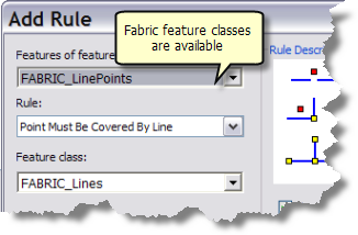 Fabric feature classes and topology rules