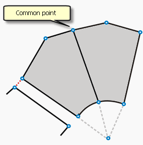 Internal topology of the parcel fabric