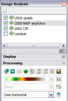 Image Analysis window: Processing section