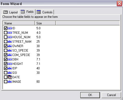 Screen shot showing the Form Wizard dialog box.