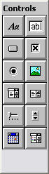Screen shot showing the Controls palette.